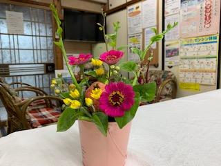 秋の野花.jpg